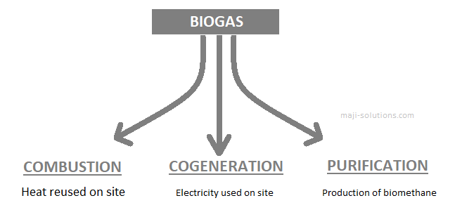 biogas recovery