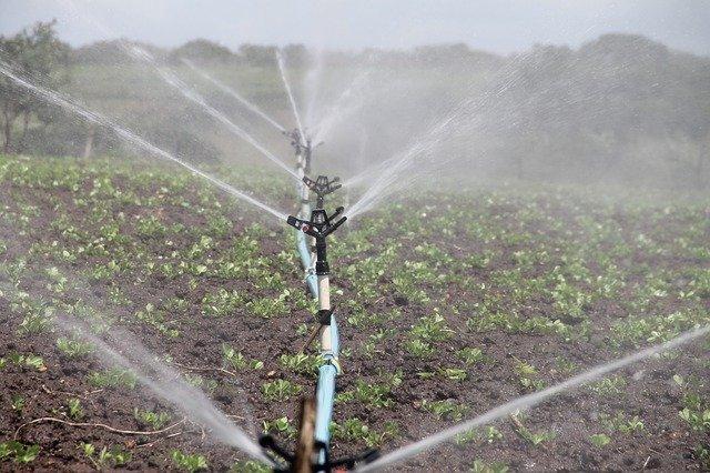 irrigation-reutilisation-eaux-usees
